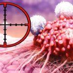 Исследования подтверждают всего 4 столовые ложки и раковые клетки погибают!