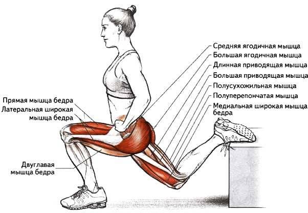 Названо лучшее упражнение для упругих ягодиц 6
