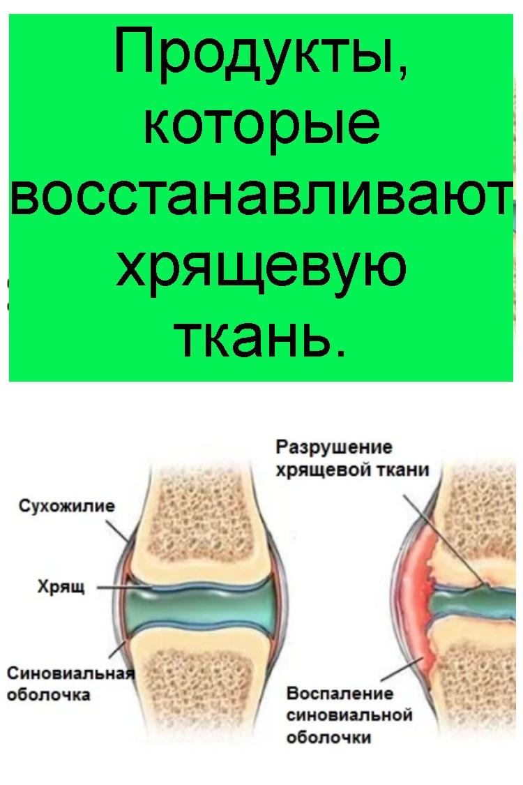 Продукты, которые восстанавливают хрящевую ткань 4