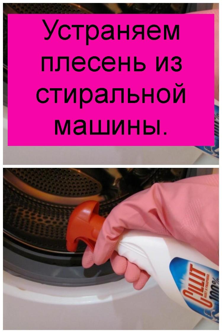 Устраняем плесень из стиральной машины 4