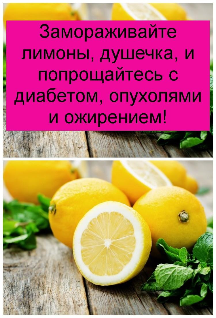 Замораживайте лимоны, душечка, и попрощайтесь с диабетом, опухолями и ожирением 4