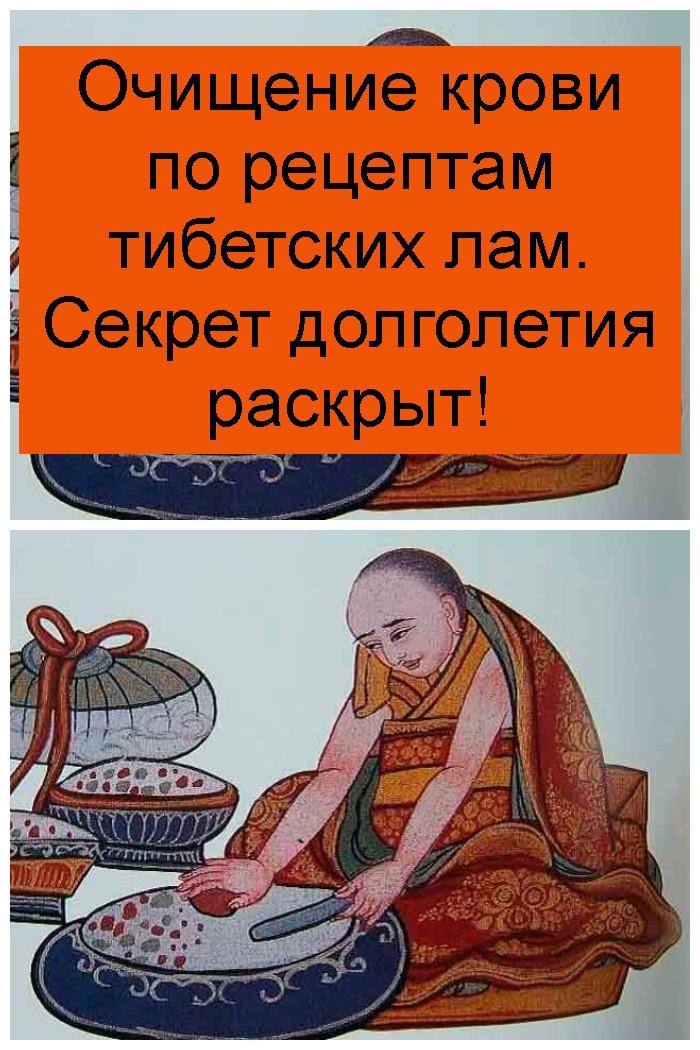 Очищение крови по рецептам тибетских лам. Секрет долголетия раскрыт 4