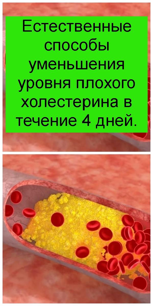 Естественные способы уменьшения уровня плохого холестерина в течение 4 дней 4