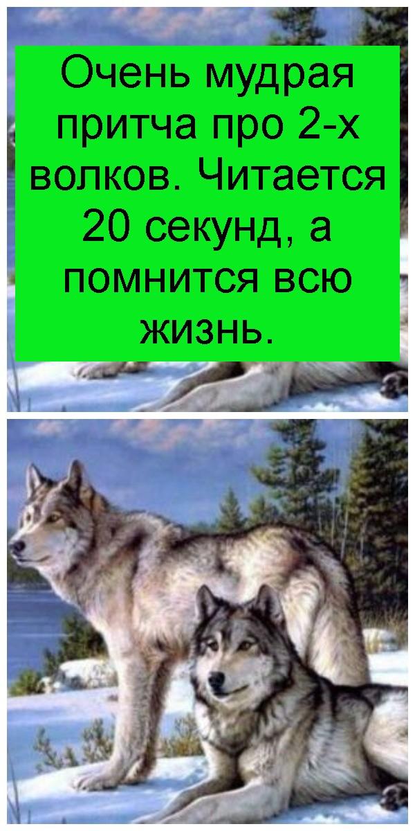 Очень мудрая притча про 2-х волков. Читается 20 секунд, а помнится всю жизнь 4